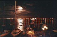 Horta marina at Night